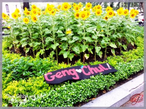 130512 Ho Chi Minh City Center 03 copy